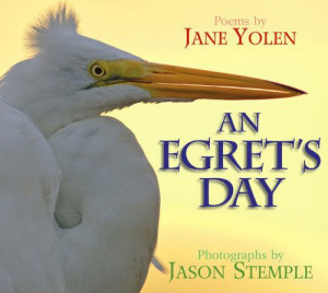 An Egret's Day by Jane Jolen